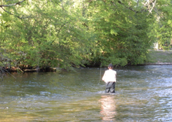 Fly fishing on the Dronne